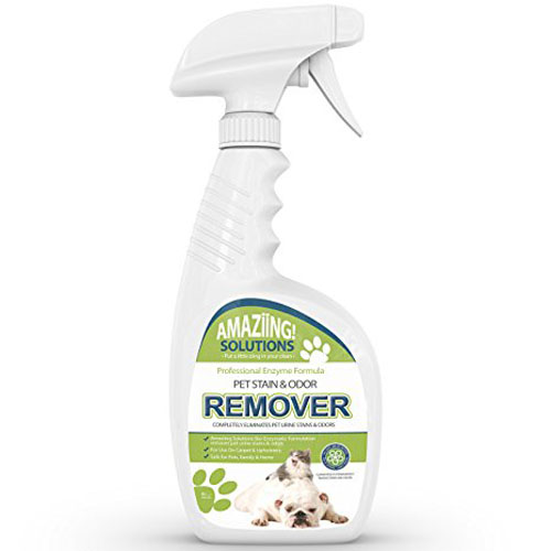 8. Best Pet Stain Remover