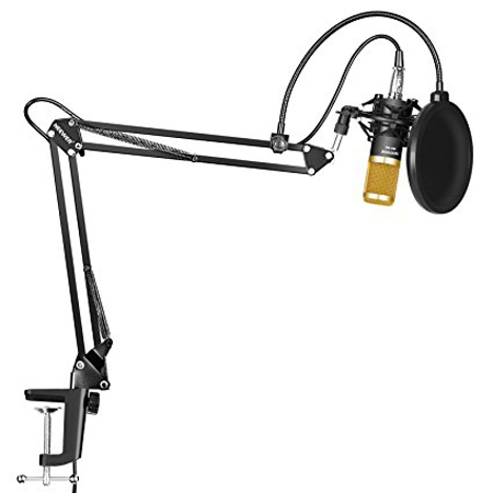 4. Neewer Professional Studio Broadcasting Recording Condenser Microphone